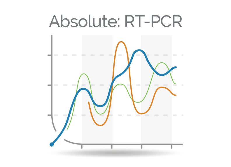 Absolute Real Time PCR Quantifier