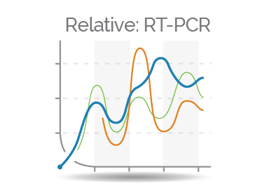 Relative Real Time PCR Quantifier