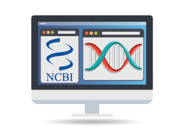 NCBI Sequence Searcher