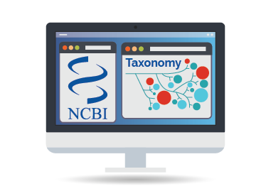 NCBI Taxonomy Searcher